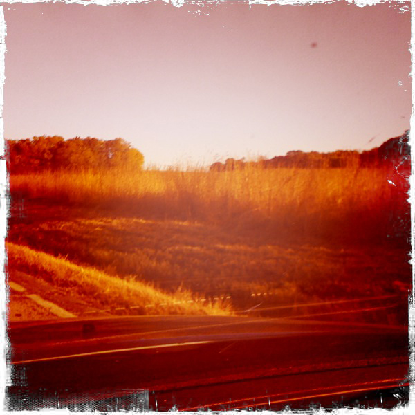 My morning drive in fall.